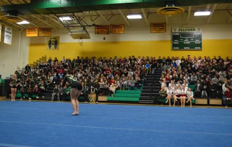 Gymnastics springs into the spotlight
