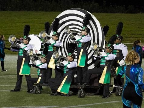 Marching Falcons lead way to success