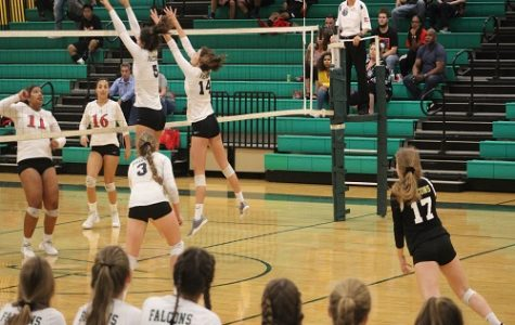 """Lady Falcon Volleyball: """"setting"""" the standard"""