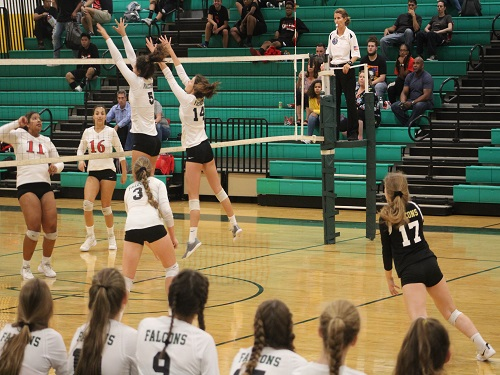 SENIOR MADDIE BUTKOVICH and Erica Hart blocked a line shot during Tuesdays home game against the Salem Sun Devils.