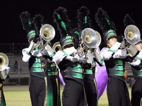 Marching Falcons stay stellar on the field