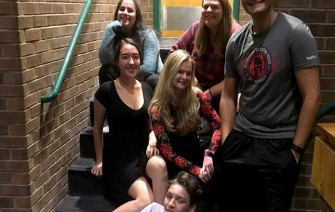 FALCON STAGE COMPANY students in mRs. Machay's upper level theater class will attend a major competition next weekend. These students were chosen based on previous performances.