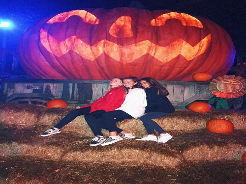 JUNIORS LAINE HILLIER, Mia LaRusso, and Iliana Benjumea sit on a haystack.  The girls took a trip to Bush Garden's Howl-o-scream to celebrate Halloween.