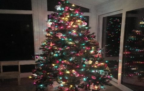 A CHRISTMAS TREE standing by a window. The tree was decorated with multi-colored lights and presents were placed underneath.