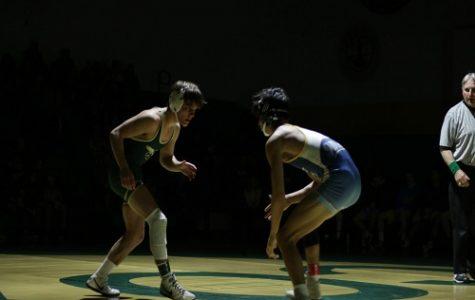 Falcon wrestling pins F.C.