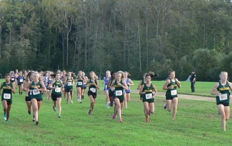 Cross Country sets standards high