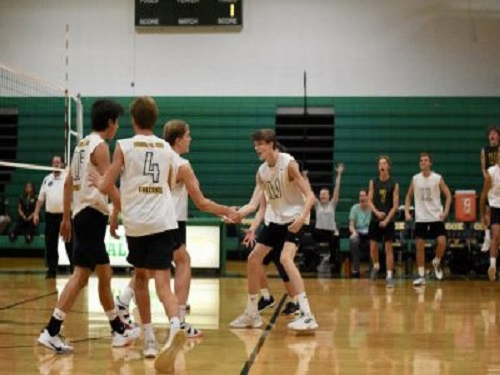 FALCON BOYS CELEBRATE junior Jason Wang's ace point.  The Falcons destroyed the Patriots in three straight sets.