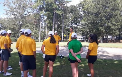 Falcon golf swings into post-season