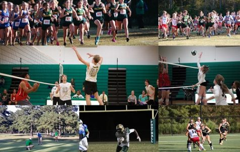 Fall sports take on post season competition