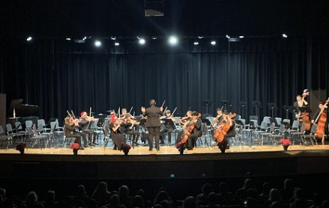 FALCON ORCHESTRA PERFORMS classic holiday tunes in their winter concert. Seniors in orchestra performed in their last winter concert Wednesday night.