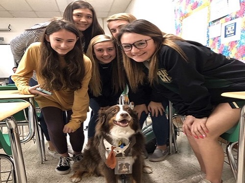 CHKD CLUB MEMBERS introduce certified therapy dog Leroy Brown to students, faculty and staff around the school.  The club's goal is to not only gather more interest in the club for CHKD fundraising purposes, but to eventually help the hospital bring in more dogs like Leroy Brown.