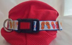 LIBBYJANEDESIGN OFFERS CUSTOM made, personalized dog collars such as this one decorated with flip flops.  The small business was launched from FaceBook by school security officer Mrs. Carlson and has exploded into a successful small business that also donates to the SPCA.