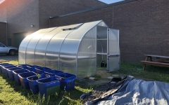 THE SCHOOL GREENHOUSE stands next to the football field ready for students to create fresh produce and herbs. SNHS Members and students in the Beach Buddies program are working together to make the school